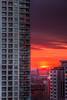 Toronto sunrise. 19 March, 2014.