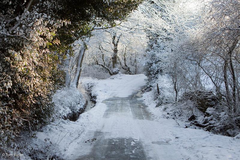 Fanshawe Gate Lane, Dec 2009