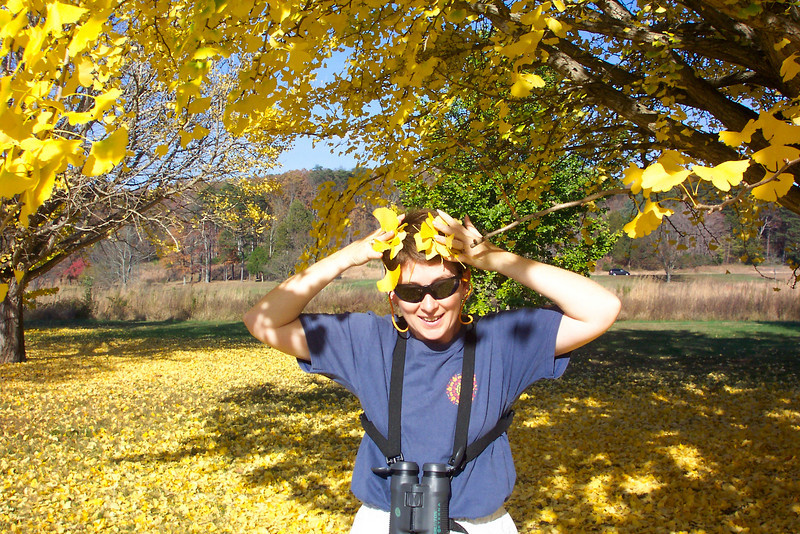 Patti is feeling a little druid-ish in the presence of such magnificent fall color.