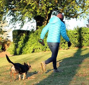 Cold Snap Dog Walk