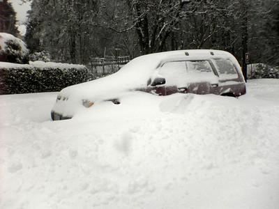 Snowed in Subaru