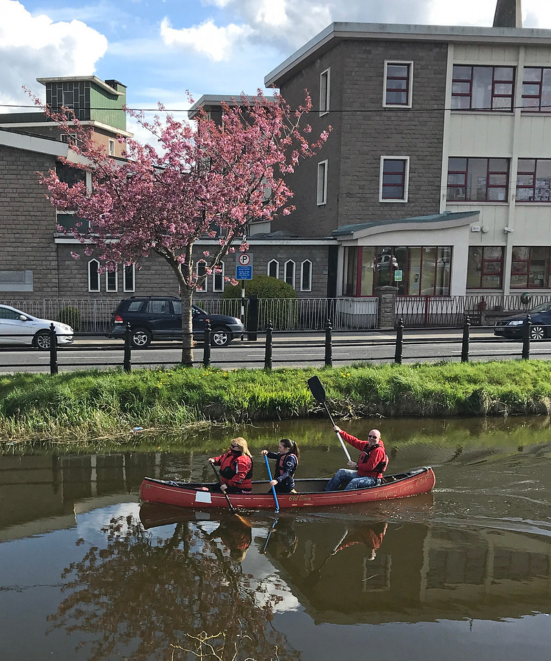 Family paddling along the canal