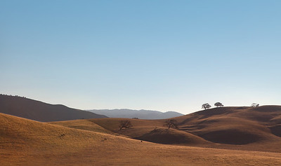 Oaks and hills, near Pinnacles National Monument
