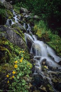 Cascade, Snoqualmie Pass