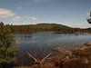 Loch an Eilein, Rothiemurchus Estate, Aviemore.