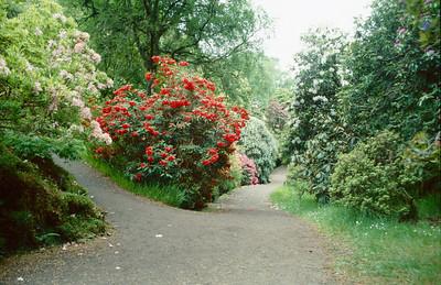 Inverewe Gardens, Poolewe