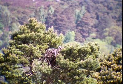 Scottish Highlands Date Unknown