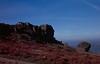 The Cow and Calf Rocks, Ilkley Moor.