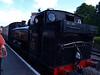 GWR 5700 Pannier Tank 5786 at Buckfastleigh.