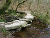 A smaller clapper bridge in the Tarr Steps Nature Reserve, Exmoor