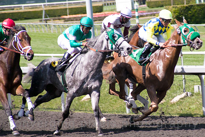 Golden Gate Fields:  April, 2012