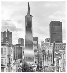 Transamerican Building from Telegraph Hill