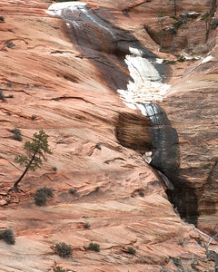 Zion slickrock showcases the powerful effects of erosion over a great period of time.