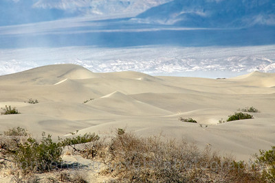 Mesquite Flat Sand Dunes, Death Valley.  1547