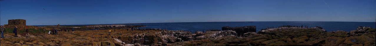 Staple Island, Farnes, Northumberland.