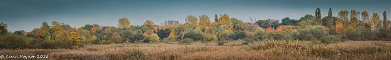 Midland Panoramas