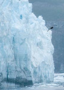"Glacier Bay National Park, Alaska. ""Glacier Bay #3a""."
