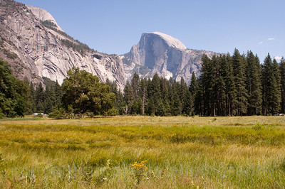 Half Dome: Afternoon