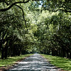 Cool Passage, Savannah, Georgia