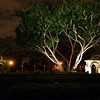 Night photography in Balboa Park, San Diego