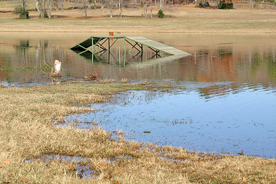 HA! Our last round of rain, put the Main Ranch Lake above its normal level. 12/01/06