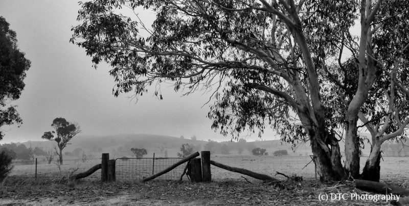 Limerick, Southern Tablelands, NSW