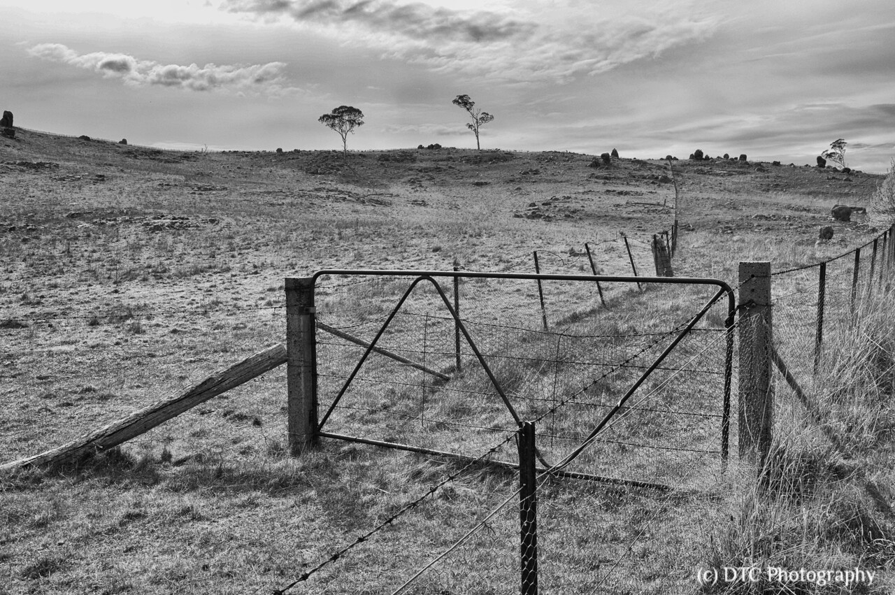 fence lines, Cullerin Range