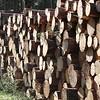 12/2/18 - Logging