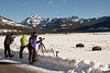 Debbie (in purple) photographing Bison in Lamar Valley in northern Yellowstone National Park. January 27, 2014.