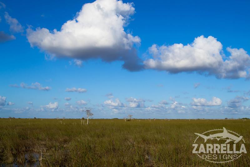 """Vastness"" (Everglades National Park, Florida)"