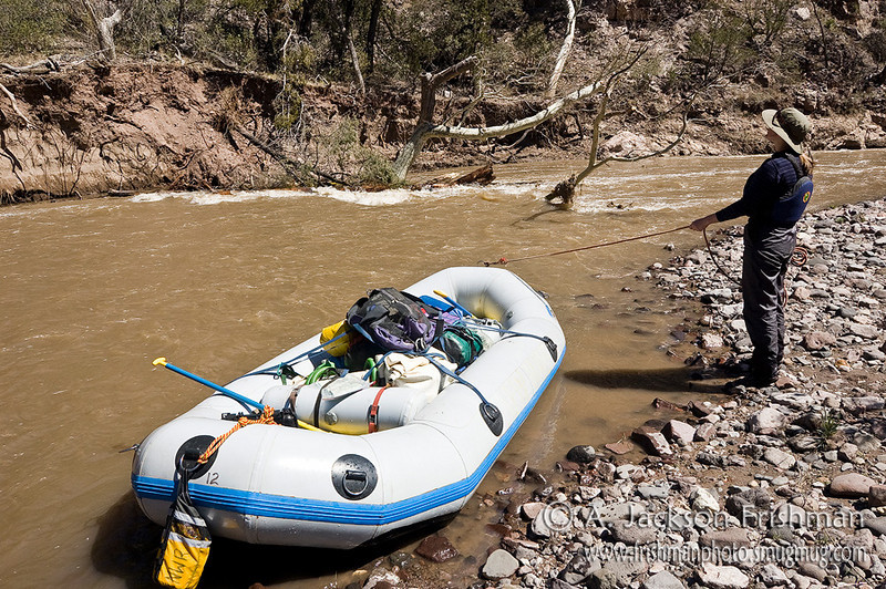 Lining a strainer on New Mexico's Gila River, March 2010.