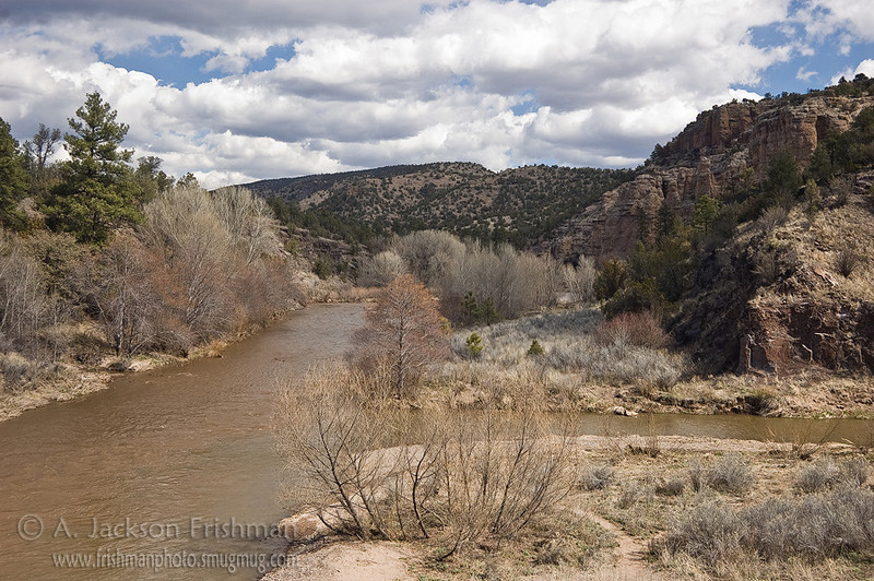 Confluence of the Gila River and the East Fork, New Mexico, March 2010.