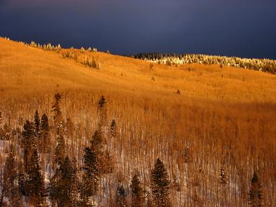 Evening light on the Sangre de Cristo range, February 2007.