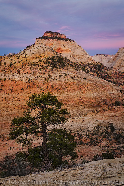 Dawn clouds above the East Temple, Zion National Park, Utah, March 2013.
