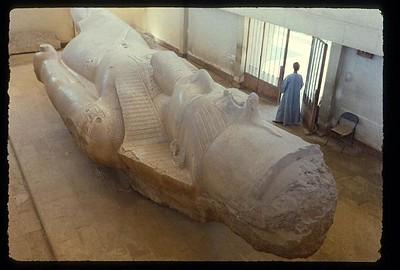 011_Sakkarah_Tete_colossale_de_Ramses_II