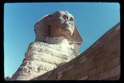 019_Gizeh_Le_majestueux_Sphinx