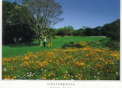 19_Cape_Town_Kirstenbosch_Botanical_Gardens