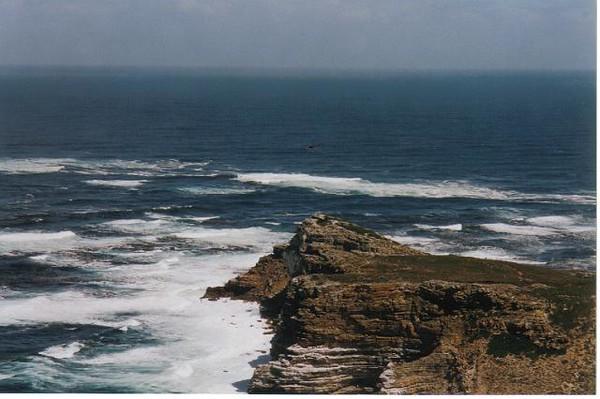 29_CP_Cape_Peninsula_l_Ocean_Indien_rencontre_le_Pacifique