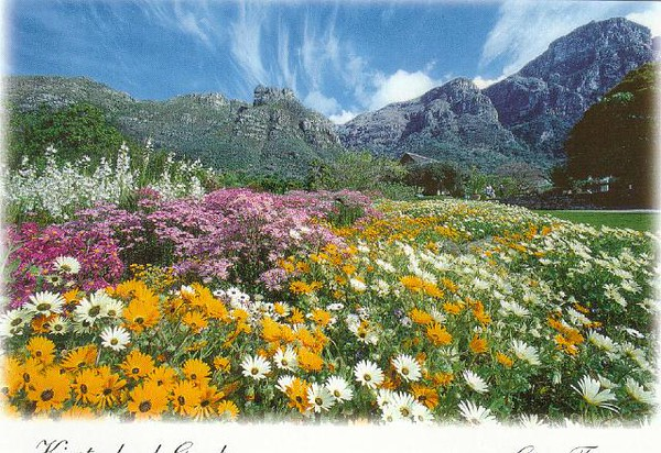 15_CT_Kirstenbosch_Botanical_Gardens_Eastern_Slopes_TM