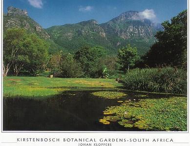18_Cape_Town_Kirstenbosch_Botanical_Gardens