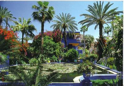437_Marrakech_Les_Jardins_de_Majorelle
