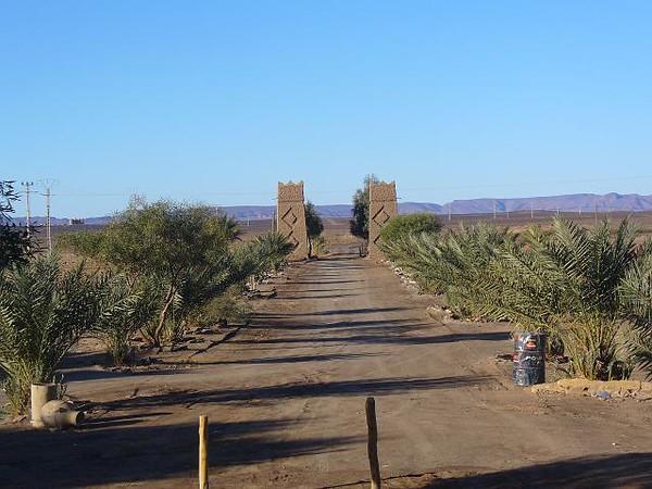 295_Dunes_Merzouga_La_route_a_travers_desert_du_Sud_Est