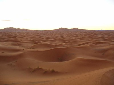 306_Merzouga_Les_dunes_de_sable_A_6_AM