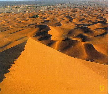298_Merzouga_Plus_grand_Erg_monde_21km_long_10km_large