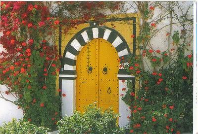 006_Tunisie_Porte_cloutee