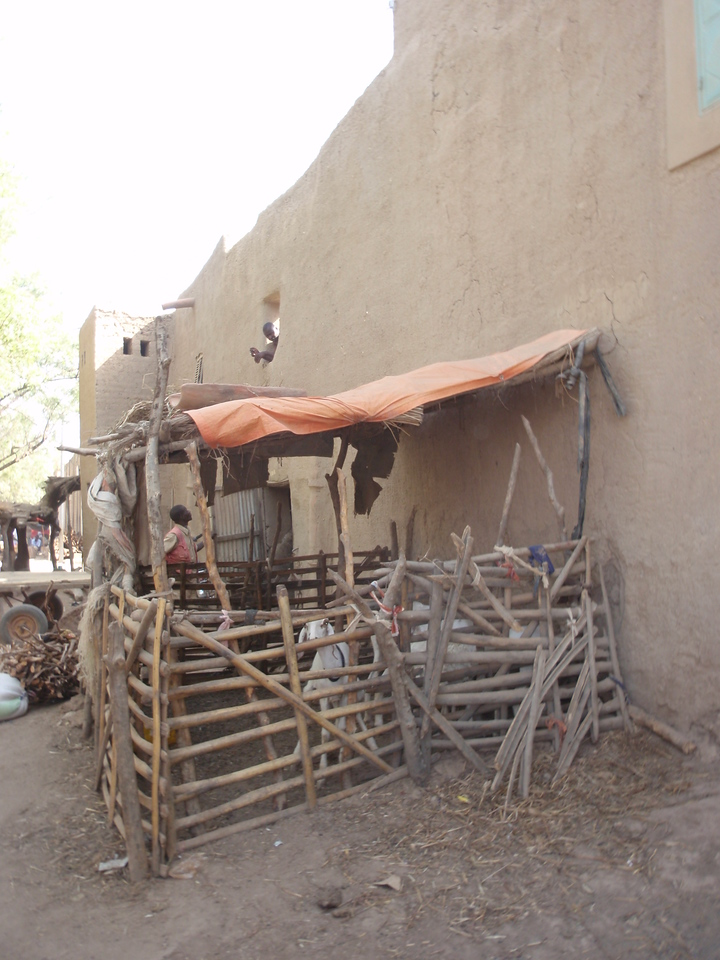 182_Djenne Old Town  Scarcely Changed since the Middle Ages