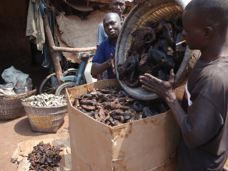 338_Mopti  Commodities to be Sold  Dried Fishes  Part 4