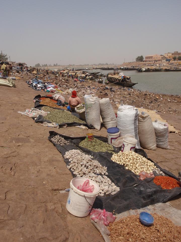 325_Mopti  A Vital Port of the Niger Inland River Delta