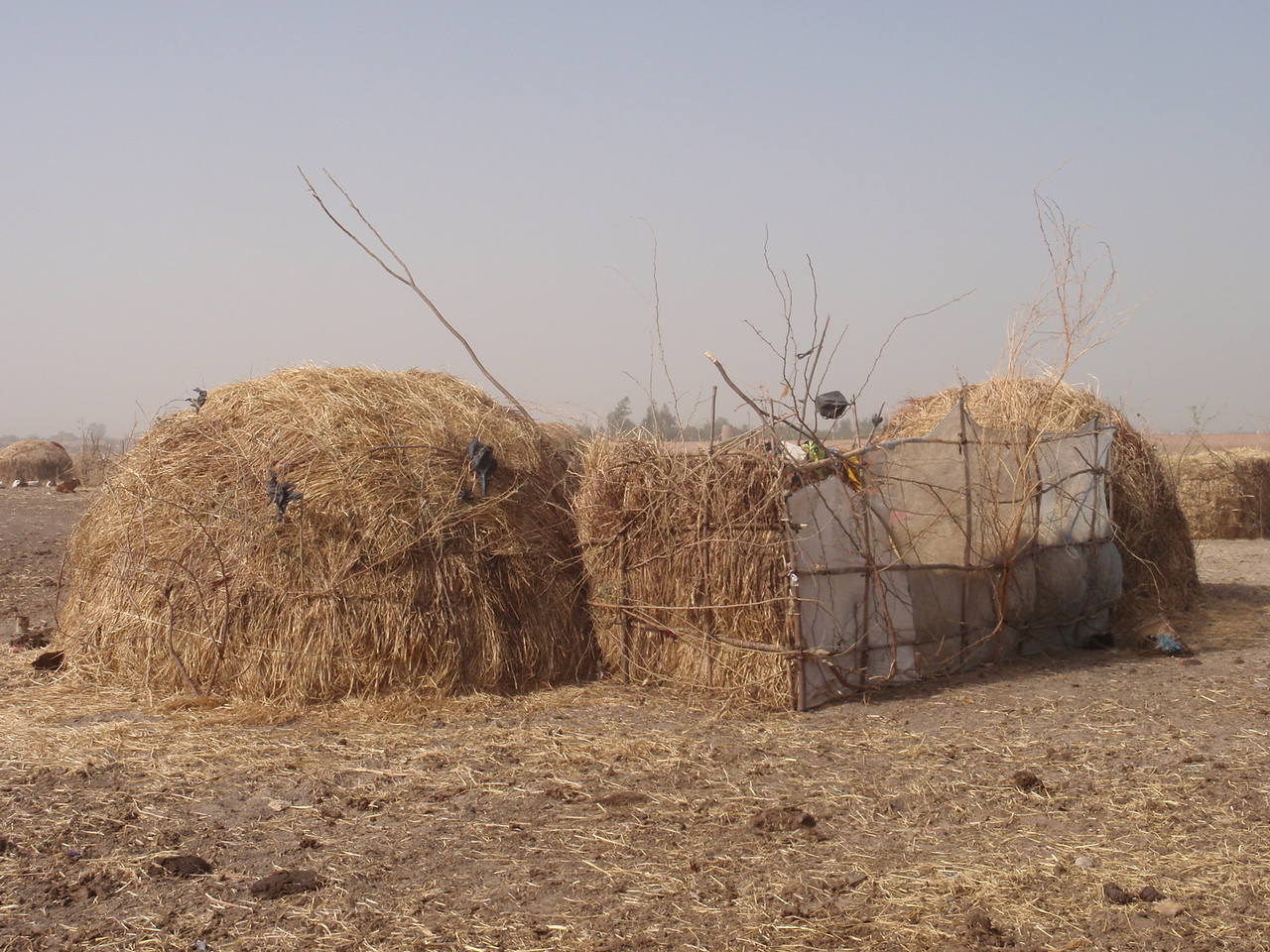 247_Mopti  The Fulani Tribe  Setting-Up The Hut  Part 4