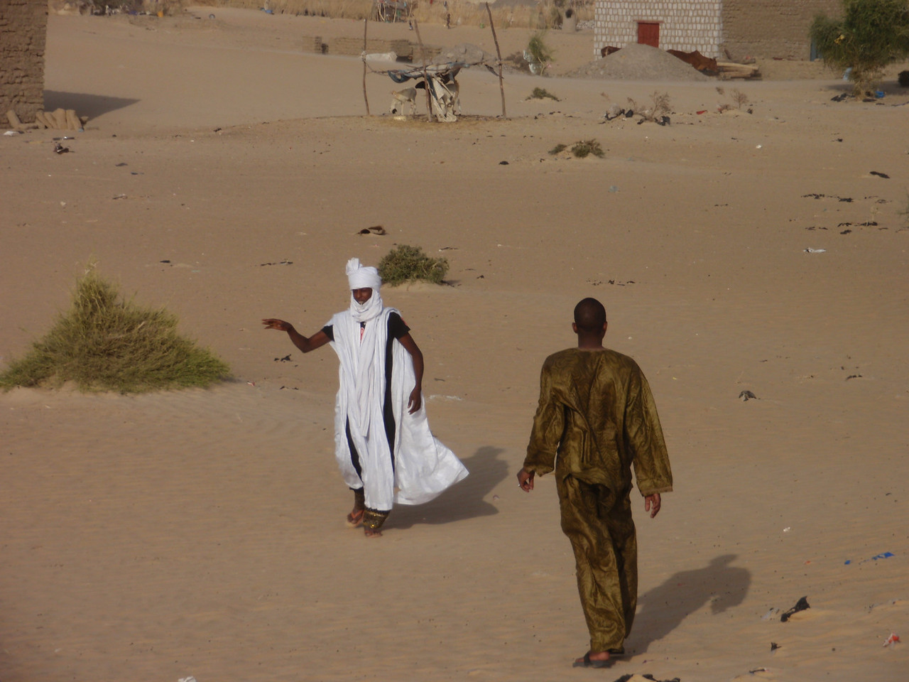 041_Timbuktu  Tuareg  Nomadic Pastoralists and Traders